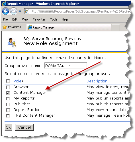 SQL Server Reporting Services - New Role Assignment